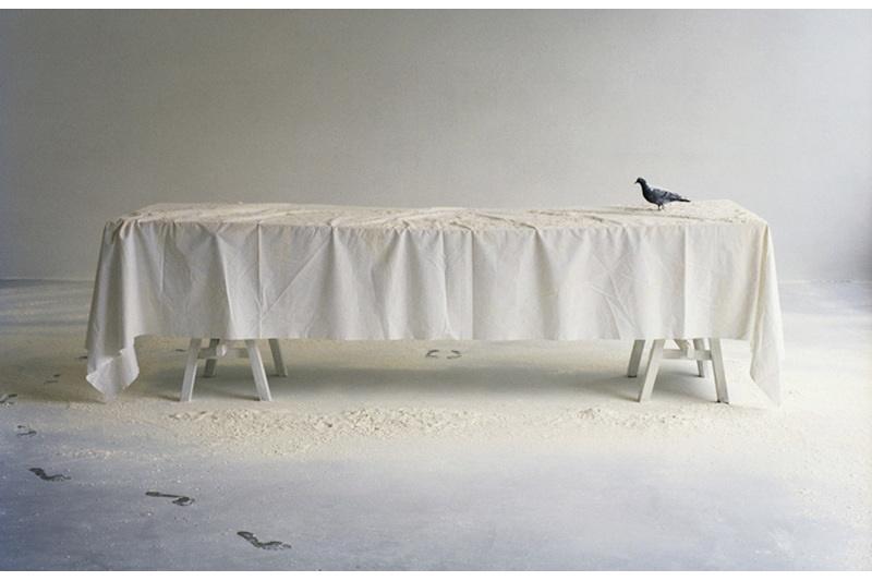 Tisch mit weißer Tischdecke und Taube, weißes Pulver auch auf dem Boden, Fußspuren
